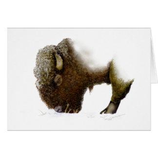 Bison en hiver carte de vœux