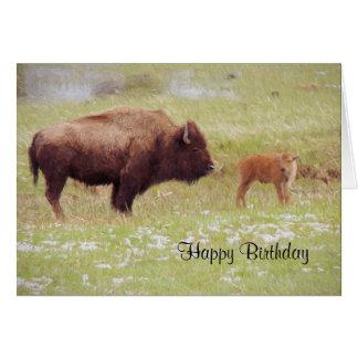 Bison et veau dans la carte d'anniversaire de