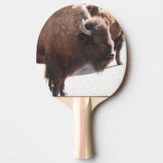 Bison Raquette Tennis De Table