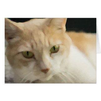 Blanc crème de carte de voeux de chat tigré à