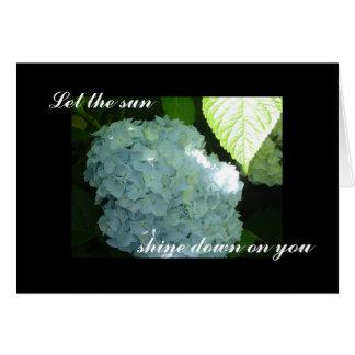 Blanc ensoleillé d'hortensias carte de vœux