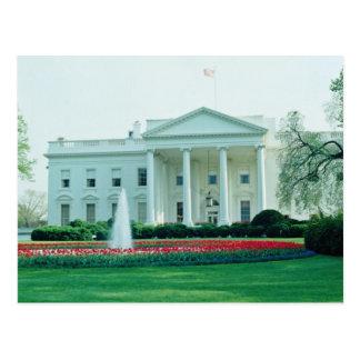 Blanc la Maison Blanche, Washington, C.C, Carte Postale
