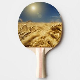 Blé d'or et ciel bleu avec le soleil raquette de ping pong