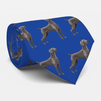 Bleu de Colbalt de cravate de Weimaraner