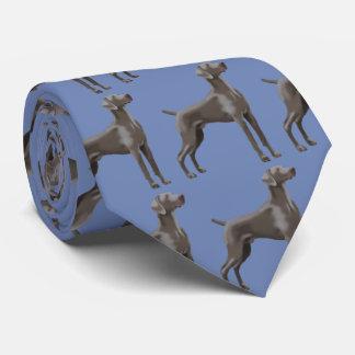 Bleu de Dresde de cravate de Weimaraner
