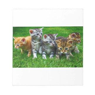 Bloc-note Cadeaux mignons de Kitty