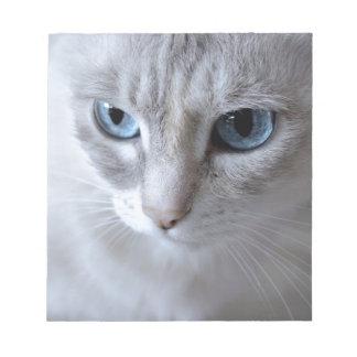 Bloc-note Chat de Kisa d'yeux bleus