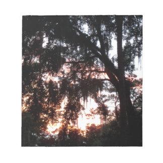 Bloc-note coucher du soleil d'or en novembre par des arbres