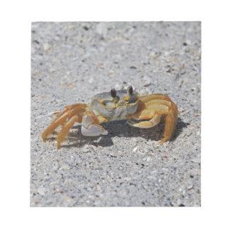 Bloc-note Crabe de fantôme