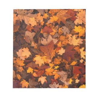 Bloc-note feuillage d'automne