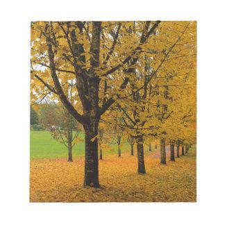 Bloc-note Feuille tombé de couleur d'automne sur des parcs