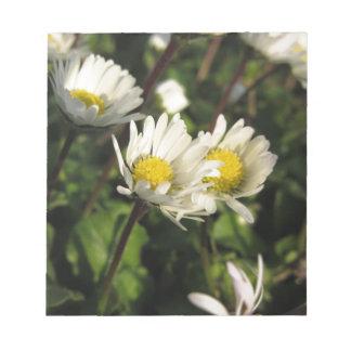 Bloc-note Fleurs de marguerite blanche sur l'arrière - plan