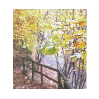Bloc-note Forêt dans l'automne