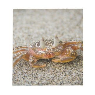 Bloc-note Griffes de crabe