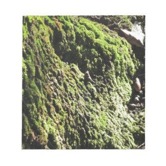 Bloc-note La mousse verte dans le détail de nature de la