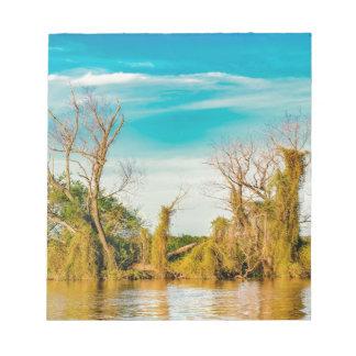 Bloc-note Le fleuve Parana, San Nicolas, Argentine