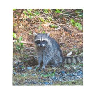Bloc-note Raton laveur à l'état du parc WA de défi de point