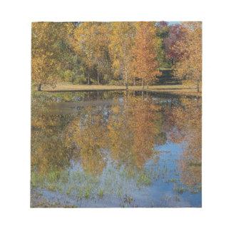 Bloc-note Réflexions colorées d'étang d'automne