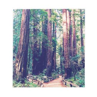 Bloc-note Séquoias de Californie