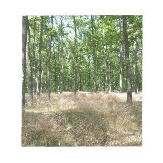 Bloc-note sous bois  et tapis de graminées à l'automne