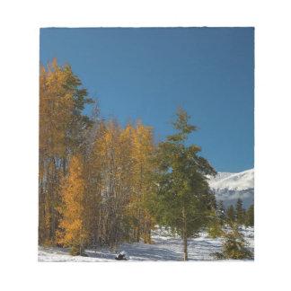 Bloc-note Vues d'automne de Leadville