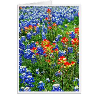 Bluebonnets, le Texas Cartes