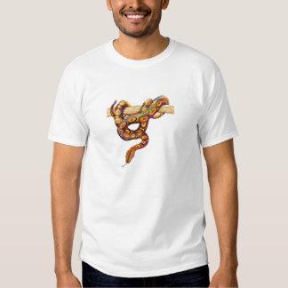 Boa brésilien d'arc-en-ciel t-shirts