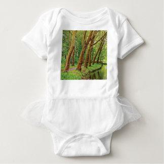 Body Arbres de penchement de la forêt