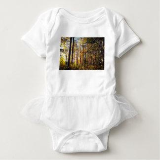 Body Forêt d'automne du New Hampshire