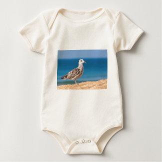 Body Jeune mouette brune sur la plage avec sea.JPG