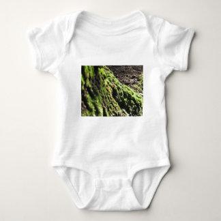 Body La mousse verte dans le détail de nature de la