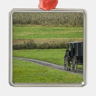 Boguet amish sur la ruelle de ferme, Ohio du Ornement Carré Argenté