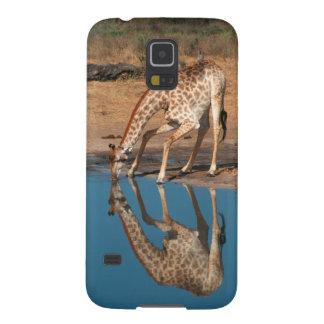 Boire de girafe (Giraffa Camelopardalis) Coque Pour Samsung Galaxy S5