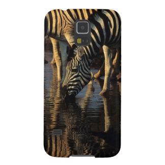 Boire de troupeau de zèbres de plaines (Quagga Coque Galaxy S5