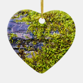 bois vert abstrait de moss_on en hiver ornement cœur en céramique