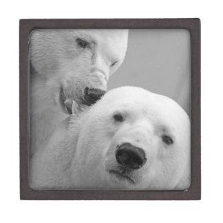 Boîte À Bijoux De Première Qualité Ours blancs