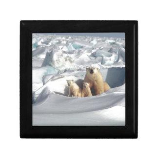 Boîte À Souvenirs Ajoutez le SLOGAN pour sauver la glace arctique de