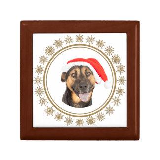 Boîte À Souvenirs Amoureux de les chiens de casquette de Père Noël