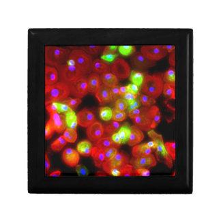 Boîte À Souvenirs Art de la Science de cellules de macrophage