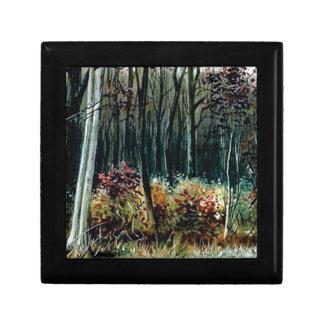 Boîte À Souvenirs beauté dans les bois