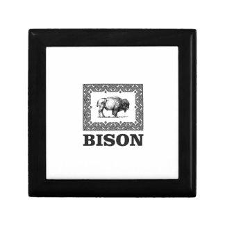 Boîte À Souvenirs Bison dans un cadre