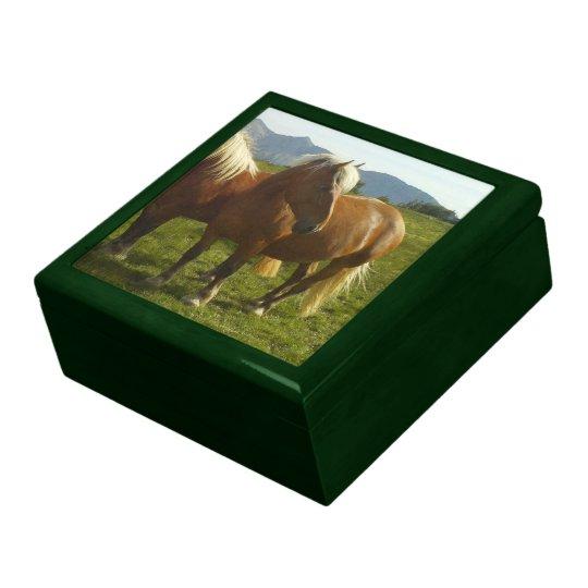 Boîte À Souvenirs Boîte à souvenir verte Cheval