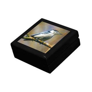 Boîte À Souvenirs Boîte-cadeau Blanche-Breasted de souvenir de