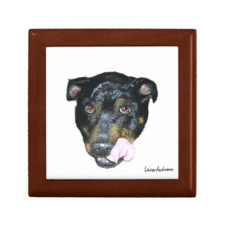 Boîte À Souvenirs Boîte-cadeau de bull-terrier du Staffordshire de