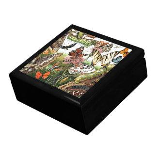 Boîte À Souvenirs Boîte-cadeau de chenilles d'animaux de mites de