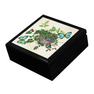 Boîte À Souvenirs Boîte-cadeau de vigne de fougères de nid d'oiseaux