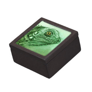 Boîte À Souvenirs Boîte-cadeau verte illustrée réaliste - iguane