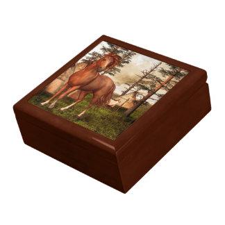Boîte À Souvenirs Boîte de bibelot de cheval de Natif américain