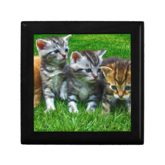 Boîte À Souvenirs Cadeaux mignons de Kitty