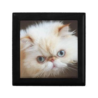 Boîte À Souvenirs Chat dans une boîte